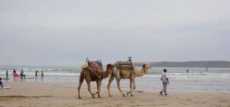 Il Marocco!